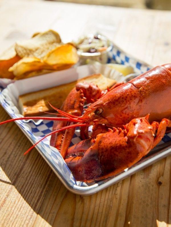 1LB Lobster